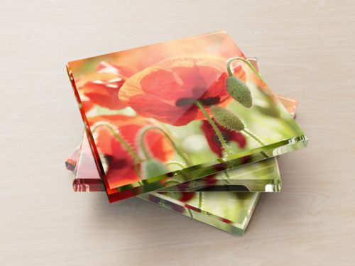 Poppies, Norfolk - Glass Coasters